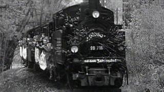 Lokomotive (Foto: SWR, SWR -)