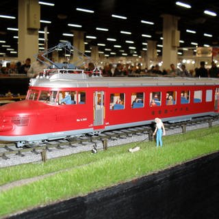 Der rote Blitz im Modell (Foto: SWR, Wolfgang Drichelt)