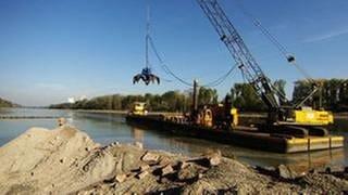 Baustelle auf dem Rhein (Foto: SWR, SWR -)