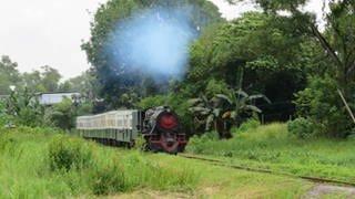 Eine Dampflok der englischen Vulcan Foundryaus den 50er Jahren steht vor den restaurierten Reisezugwagen der North Borneo Railway. (Foto: SWR, SWR - Susanne Mayer-Hagmann)
