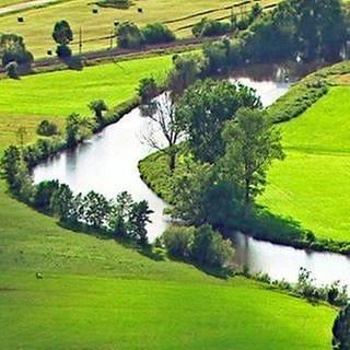 Donauquelle (Foto: SWR, SWR -)