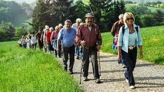 Eine Gruppe von Wanderern läuft durchs Grüne (Foto: SWR, SWR -)