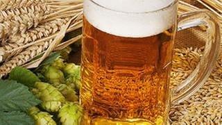 Ein gefüllter Bierkrug. Daneben liegen Getreidekörner und Hopfen. (Foto: Getty Images, Thinkstock -)
