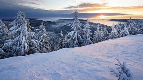 Hornisgrinde im Schwarzwald (Foto: Imago, imago stock&people - imageBROKER/Dierk Boeser)