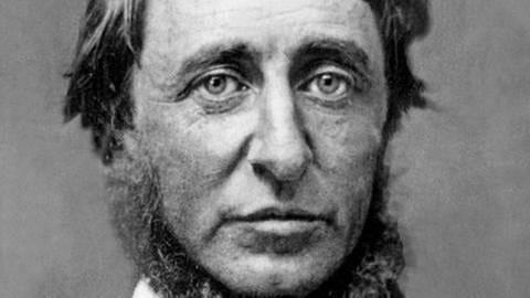 Henry David Thoreau (1817-1862), amerikanischer Privatgelehrter und Philosoph (Foto: picture-alliance / dpa, picture-alliance / dpa - CSU Archives/Everett Collection)
