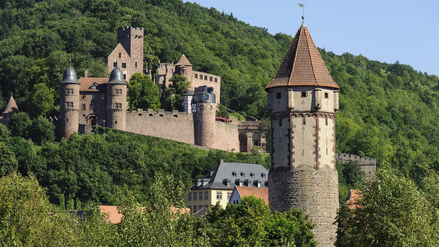 Burg Wertheim (Foto: picture-alliance / dpa, picture-alliance / dpa - Dirk Renckhoff)