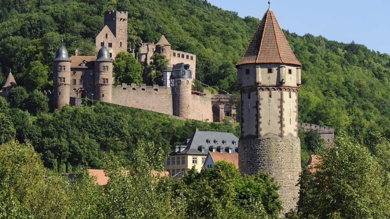 Burg Wertheim (Foto: picture-alliance / dpa, picture-alliance / dpa - Dirk Renckhoff)