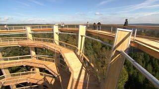 Aussichtsturm Baumwipfelpfad (Foto: SWR)
