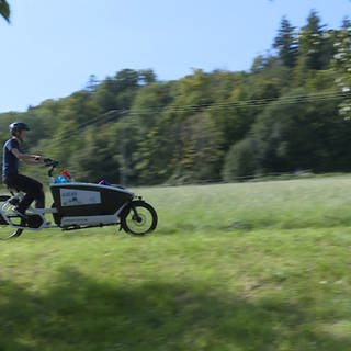 Lastenfahrräder (Foto: SWR, SWR)