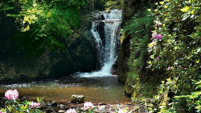 Geroldsauer Wasserfälle (Foto: Pressestelle, Baden-Baden Kur & Tourismus GmbH)