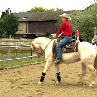 Ein Pferd und sein Cowboy (Foto: SWR)