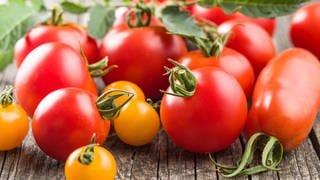 Verschiedene Tomatensorten (Foto: Imago, imago images / Panthermedia)