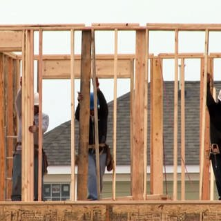 Holz wird immer teurer (Foto: SWR, SWR)