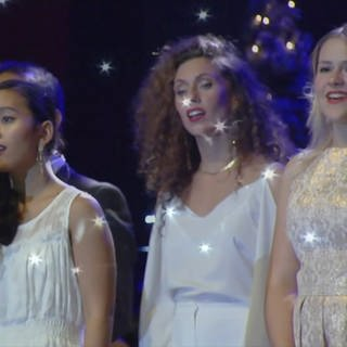 Ensemble von Christmas Moments im Konzert (Foto: SWR)
