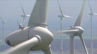 Mehrere Windräder - Rotoren kreisen (Foto: SWR)