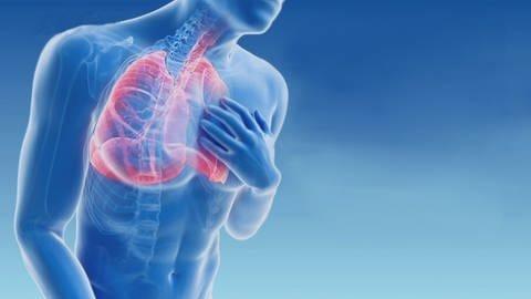 Grafik mit Lunge, Skelett und gekennzeichneten Bronchien (Foto: SWR)