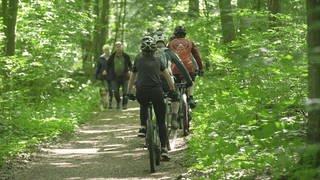 Waldweg, Fußgänger und Mountainbike-Fahrer begegnen sich (Foto: SWR)