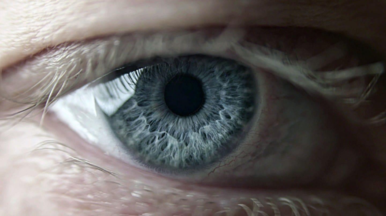 Auge (Foto: SWR, SWR)