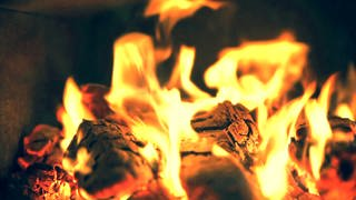 Kaminofen - brennendes Kaminfeuer (Foto: SWR)