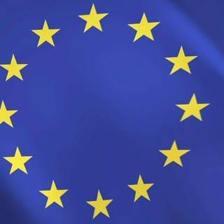 Europaflagge (Foto: SWR)