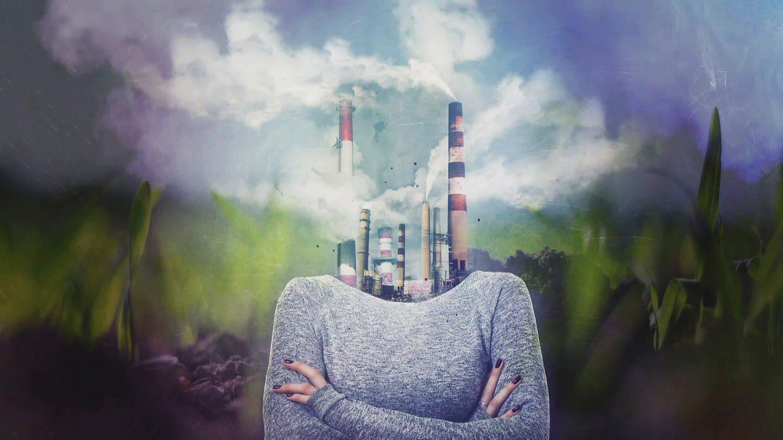 Grafik: Collage Mensch, Fabrik (Foto: SWR)