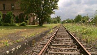 Stillgelegte Bahnstrecke im ländlichen Raum (Foto: SWR)