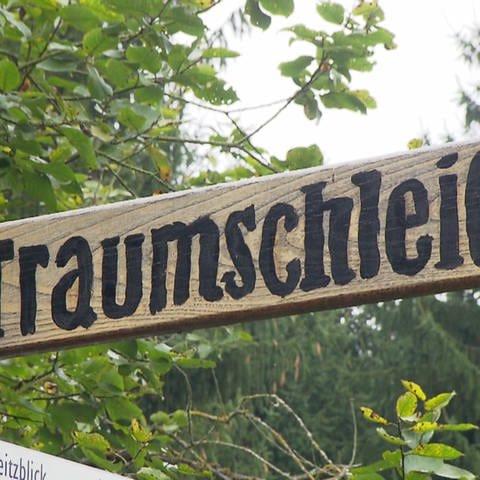 Traumschleife Rheingold (Foto: SWR)
