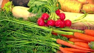 Verschiedene Wurzelgemüse auf dem Markt präsentiert: Karotten, Radieschen, Rettich, Pastinaken, Rote Beete (Foto: SWR)
