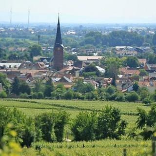 Deidesheim (Foto: SWR, SWR -)