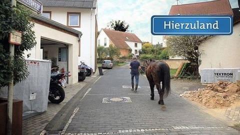 Butzweiler - Borengasse (Foto: SWR, SWR -)
