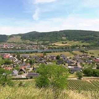 Hierzuland Biebelhausen Ortsansicht (Foto: SWR)