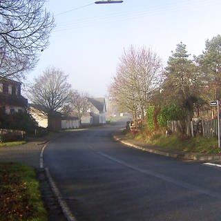 Wahlenau - Die Hauptstraße (Foto: SWR)