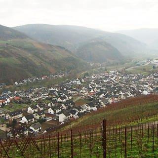 Dernau - Eine Ortsansicht (Foto: SWR)