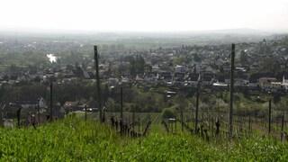 hzl muenster-sarmsheim ortsansicht (Foto: SWR)