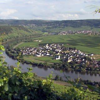 Ortsansicht Köwerich (Foto: SWR)