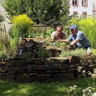 Männer bei der Gartenarbeit (Foto: SWR, SWR -)