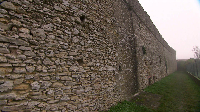 Eine Seitenansicht der rästelhaften Mauer in Rheinhessen. (Foto: SWR)