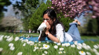 Eine Frau liegt auf einer Wiese und niest (Foto: dpa Bildfunk, Foto: Bodo Marks)