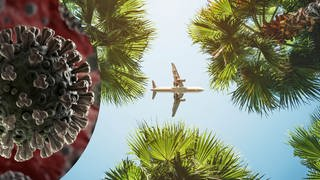 Urlaub international flugzeug Corona (Foto: Getty Images, tarasov_vl, fpm)