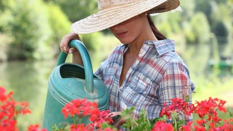 Frau gießt Geranien in Balkonkasten - Dünger lässt sich leicht selbst herstellen (Foto: Colourbox)