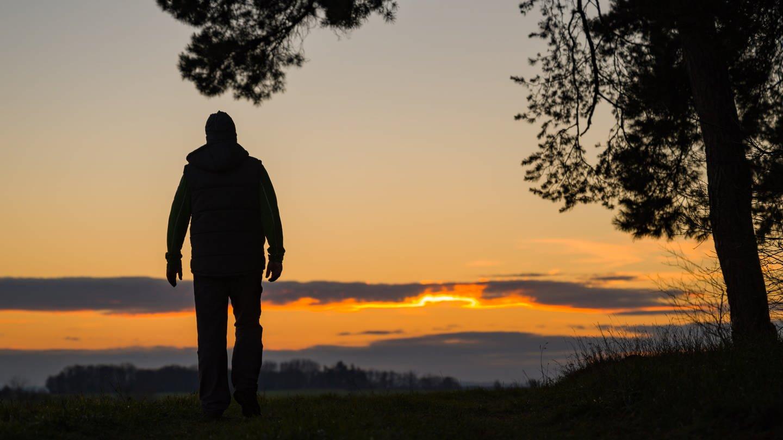 Ein Mann geht im letzten Tageslicht an einem Waldrand spazieren. (Foto: dpa Bildfunk, picture alliance/dpa/dpa-Zentralbild   Patrick Pleul)