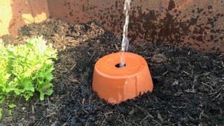 Mit dem unterirdischen Wasserreservoir, der Olla, braucht man weniger Wasser als beim Gießen der kompletten Oberfläche. (Foto: SWR)