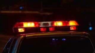Blaulicht eines Polizeiautos (Foto: Colourbox, (Symbolbild))