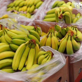 Bananen (Foto: Getty Images, Getty Images -)