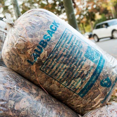 Säcke mit Laub stehen an einem Straßenrand.  (Foto: dpa Bildfunk, picture alliance/Daniel Bockwoldt/dpa)