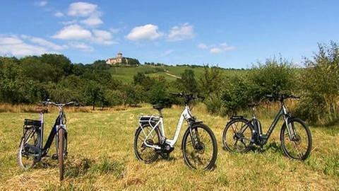 Drei Fahrräder stehen auf einer Wiese (Foto: SWR, SWR -)