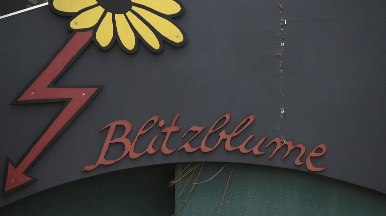Blitzblume in Ingelheim (Foto: SWR)