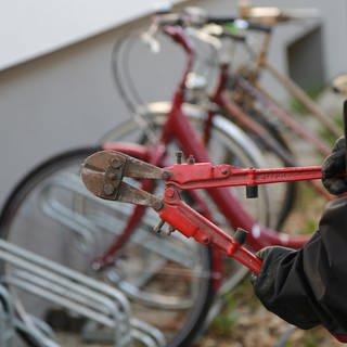 Bolzenschneider in der Hand eines Diebes vor einem Ständer mit Fahrrädern. Gute Fahrradschlösser können vor Fahrraddiebstahl schützen. (Foto: dpa Bildfunk, picture alliance / Karl Schöndorfer / picturedesk.com)